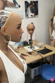 Digisexuals-sex-robots-web2.0