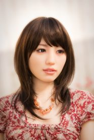 Japanese-collecting-sex-dolls