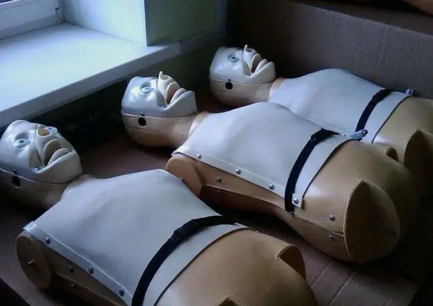 japanese-universities-use-realistic-sex-dolls-for-medical-teaching-2