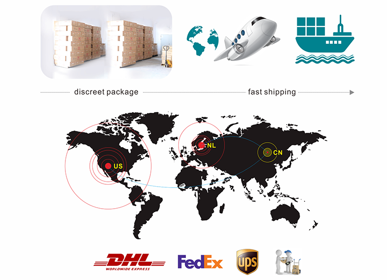ES Doll Warehouse Location in US and European