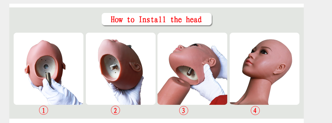 how to install sex doll head